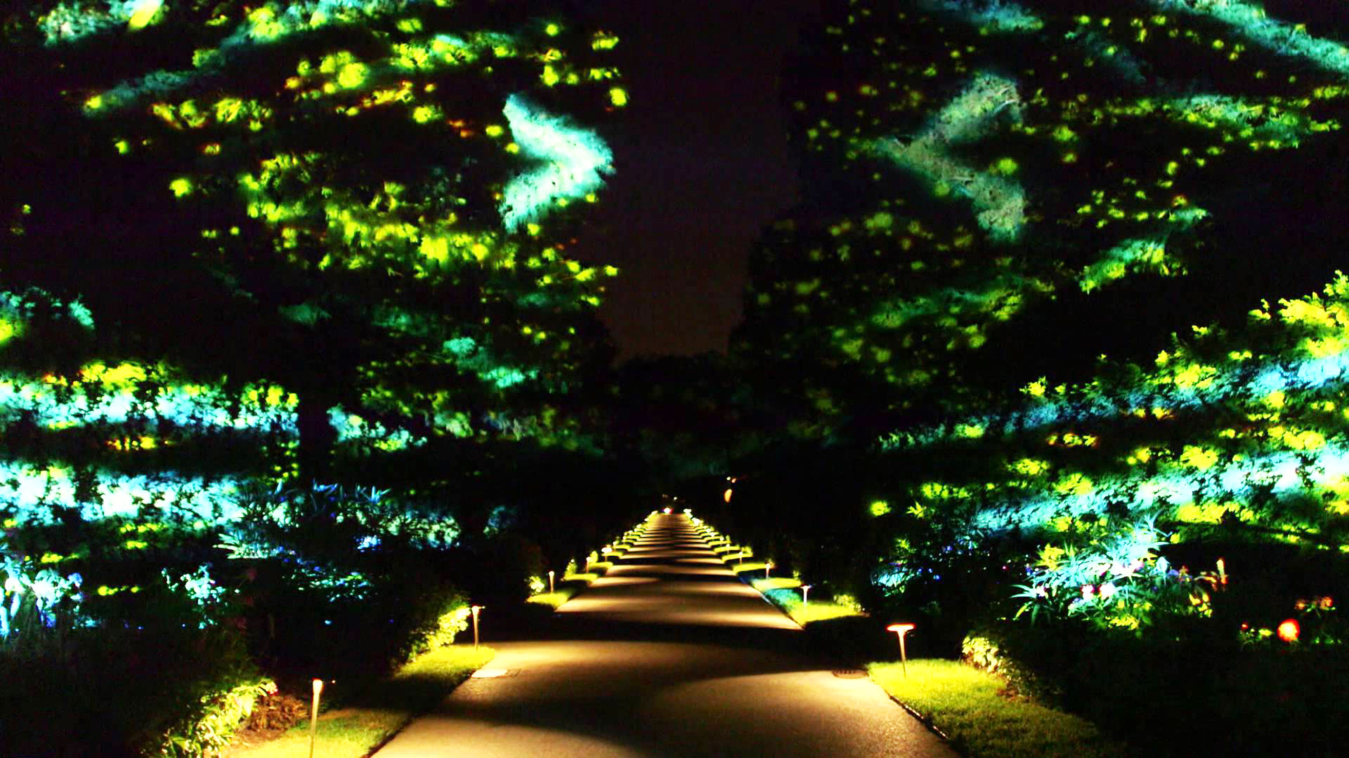 Longwood gardens nightscape related keywords longwood gardens nightscape long tail keywords for Longwood gardens discount tickets