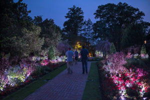 (Photo by H. Davis for Longwood Gardens)